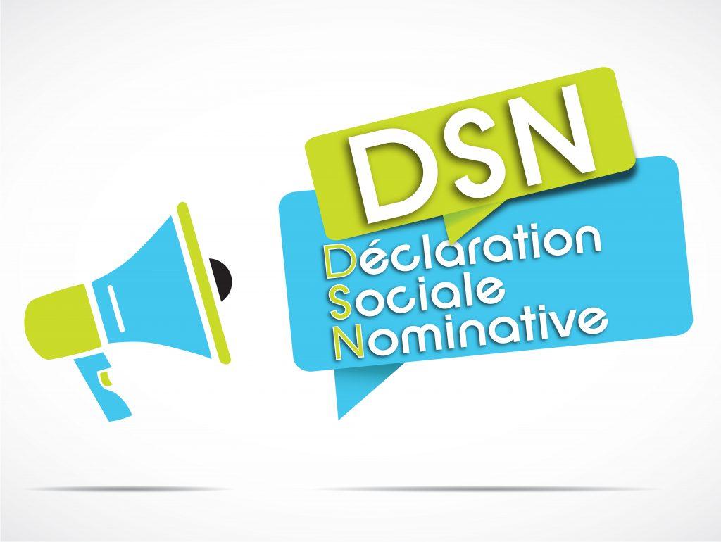 Qu'est-ce que la DSN ?